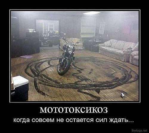 x_406fff3a.jpg